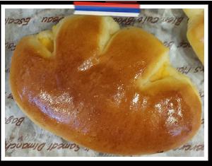 自家製カスタードクリームパン